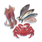 Le poisson, les fruits de mer