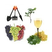 Horticulture and viticulture