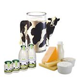 food & beverage in Netherlands - Service catalog, order wholesale and retail at https://nl.all.biz