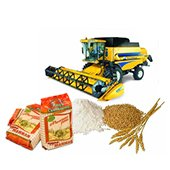 Grains  processing and marketing